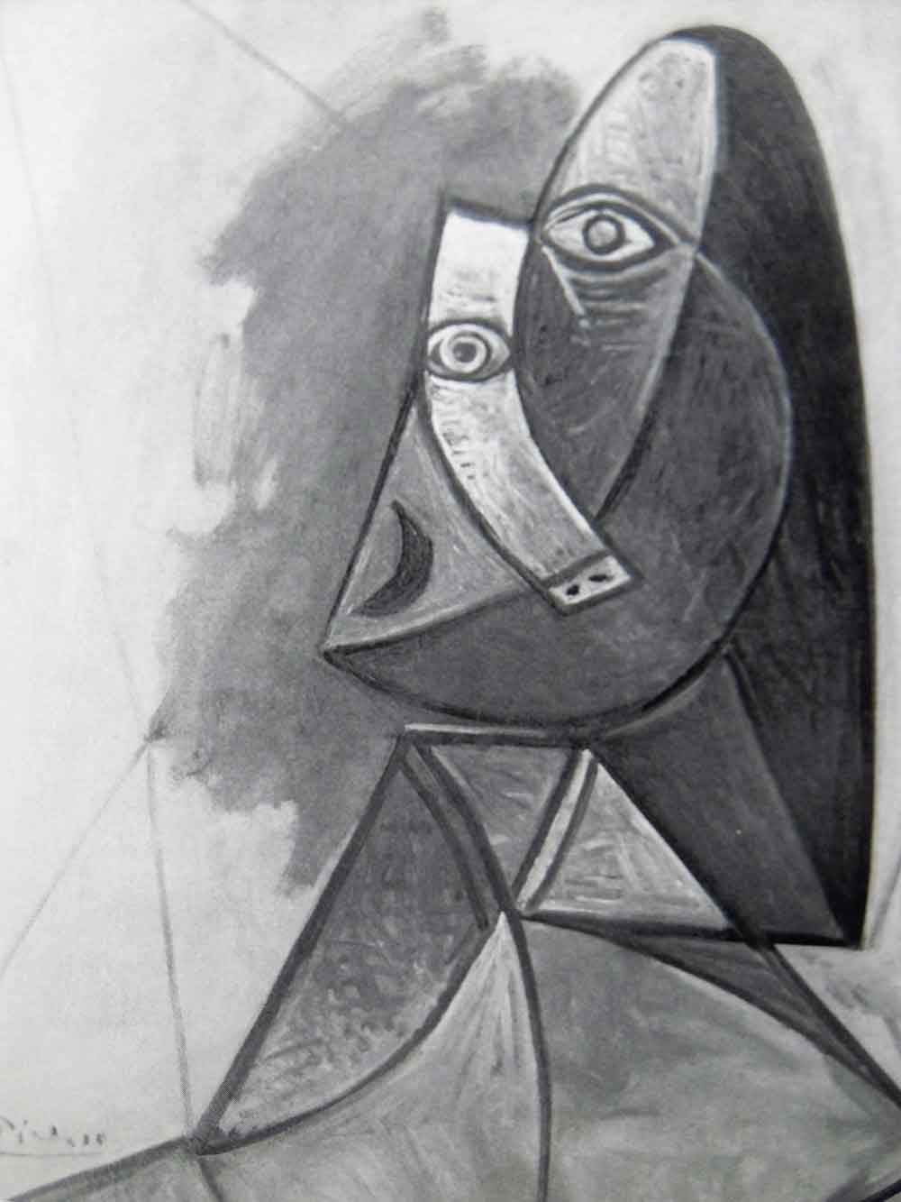 Picasso | Wim Zorn